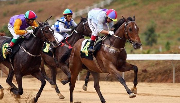 Winning from virtual horse racing and other sports betting